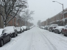 Snow day, 5 March 2015