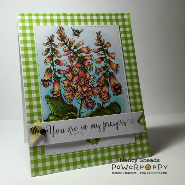 Rowhouse Greetings | Sympathy |Bees in Foxglove by Power Poppy