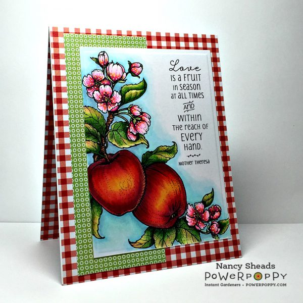 Rowhouse Greetings | Apples in Season by Power Poppy