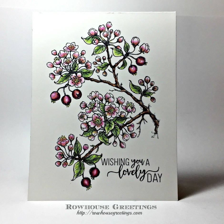 Rowhouse Greetings | Thinking of You | Flowering Branches by Power Poppy