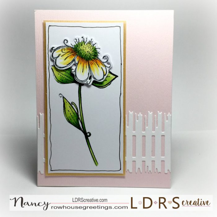 Rowhouse Greetings | Daisy Daisy by Polkadoodles
