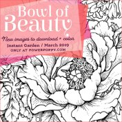 Bowl of Beauty by Power Poppy